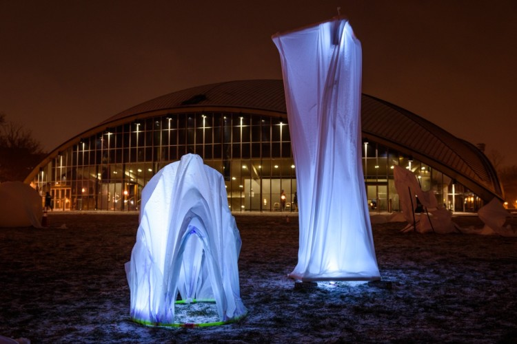 Forces Frozen Ice Fabric Structures