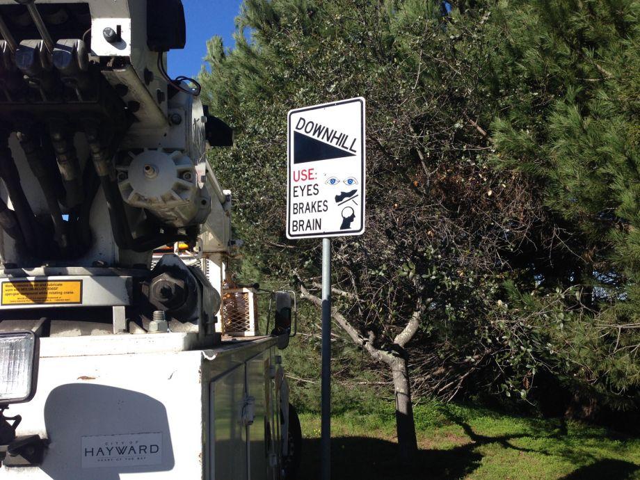 Sassy Street Signs in Hayward California