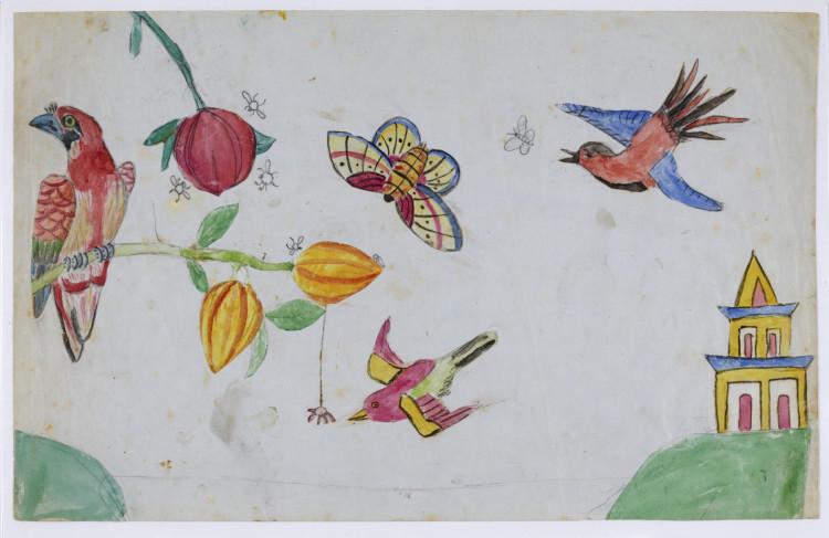 Darwin manuscript birds and butterflies