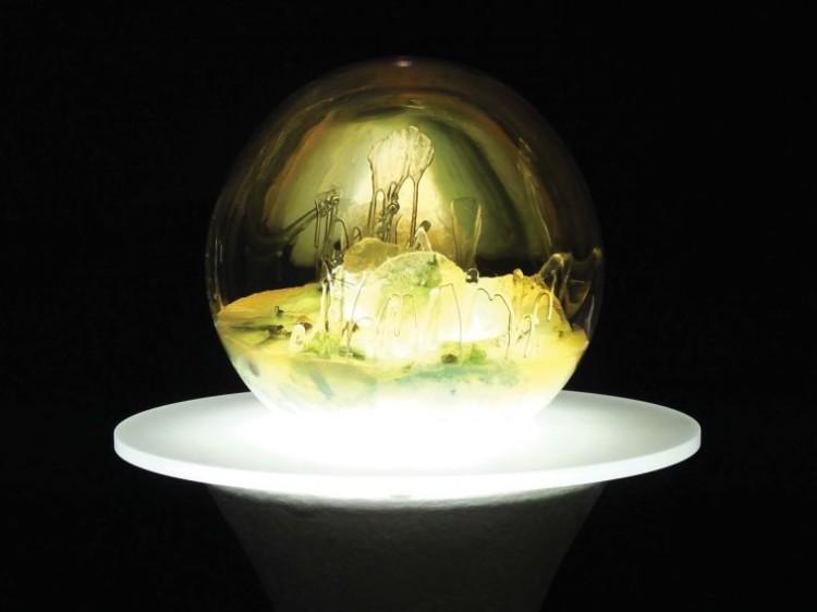 Gazing Globe
