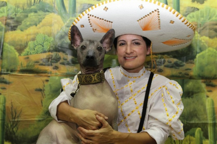 Mexican Dog and Human