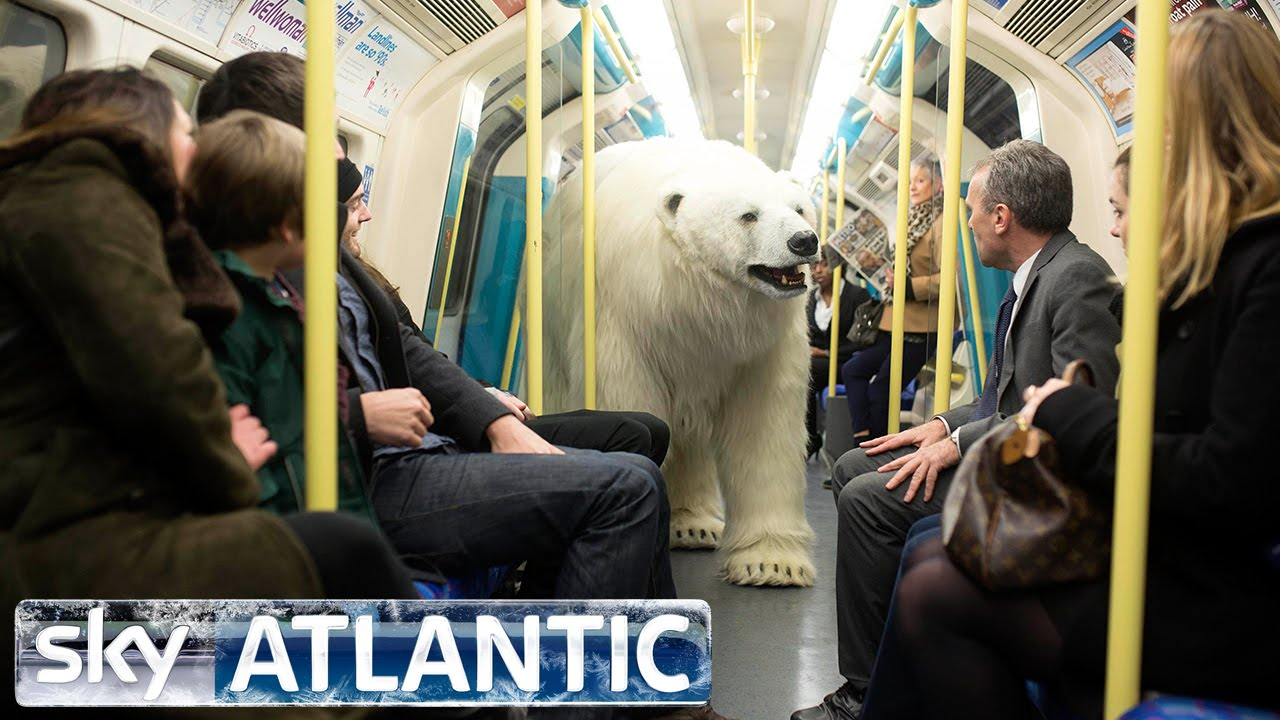 A Lifelike Eight-Foot Polar Bear Puppet Set Loose on Streets of London to Promote New Sky TV Show