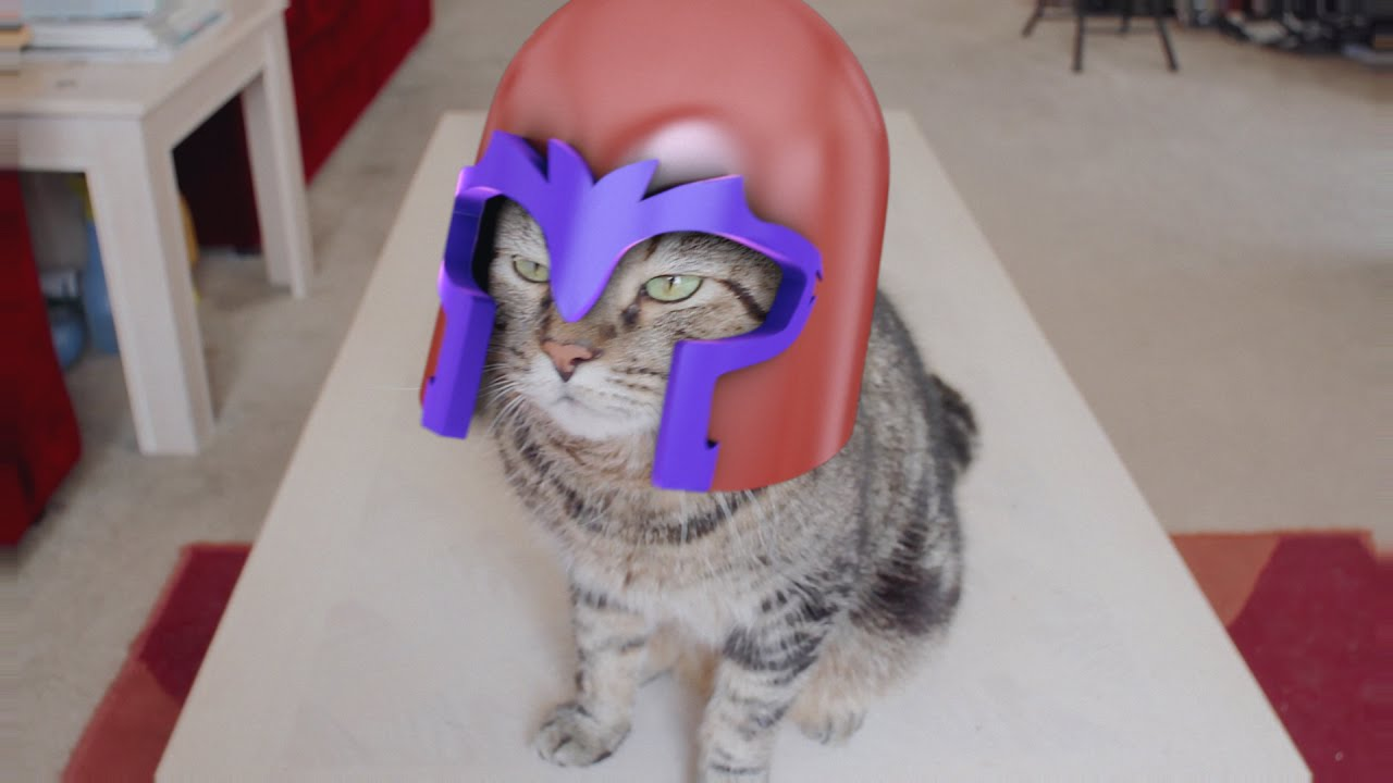 'X-Men: Magneto Cat', ...