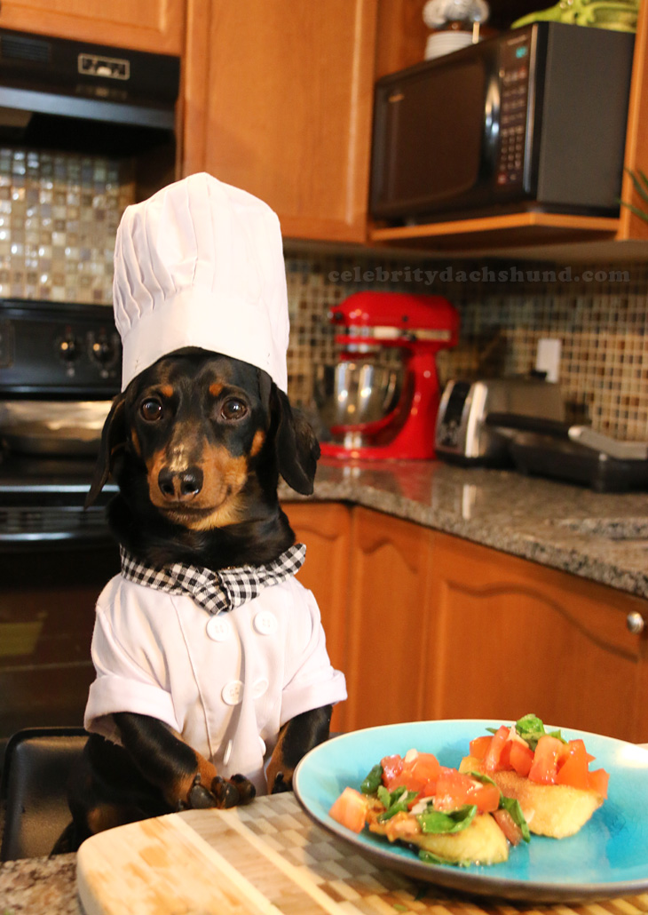 Crusoe the Celebrity Dachshund and Chef Gino D'Acampo Demonstrate How to Make a Quick and Easy Bruschetta Classica