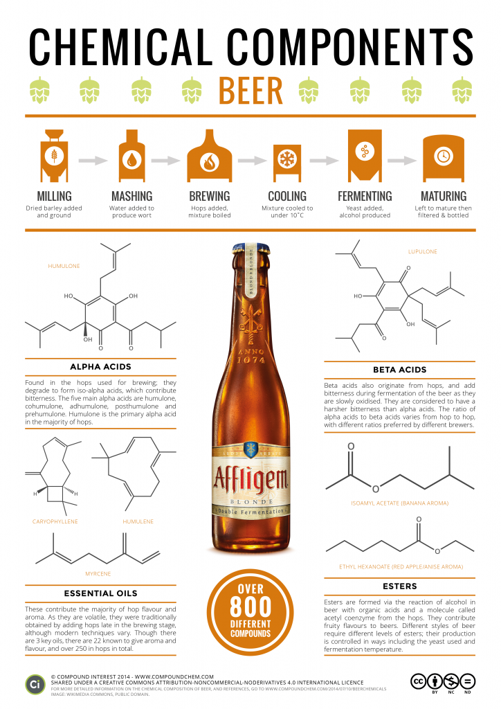Chemical Composition of Beer
