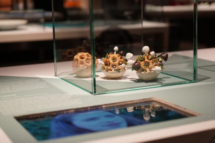 Edible Growth 3D-Printed Food by Chloé Rutzerveld