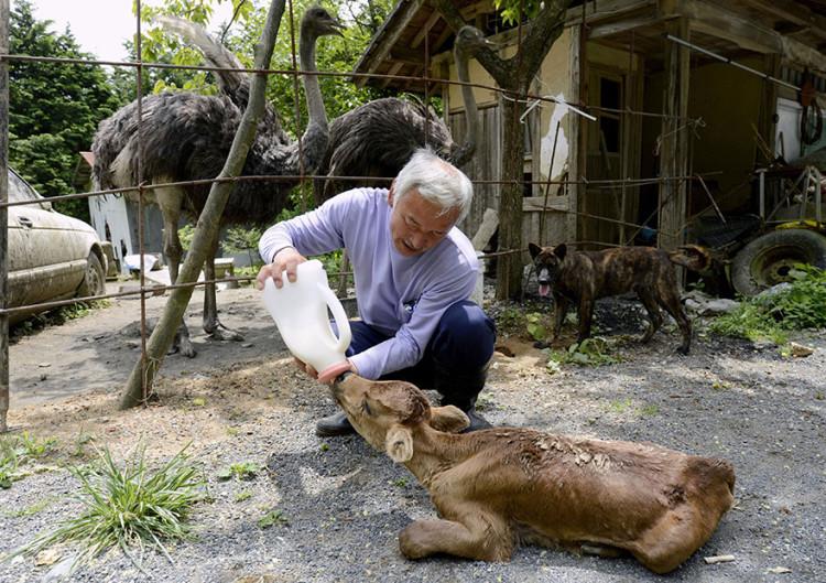 Feeding Abandoned Animal