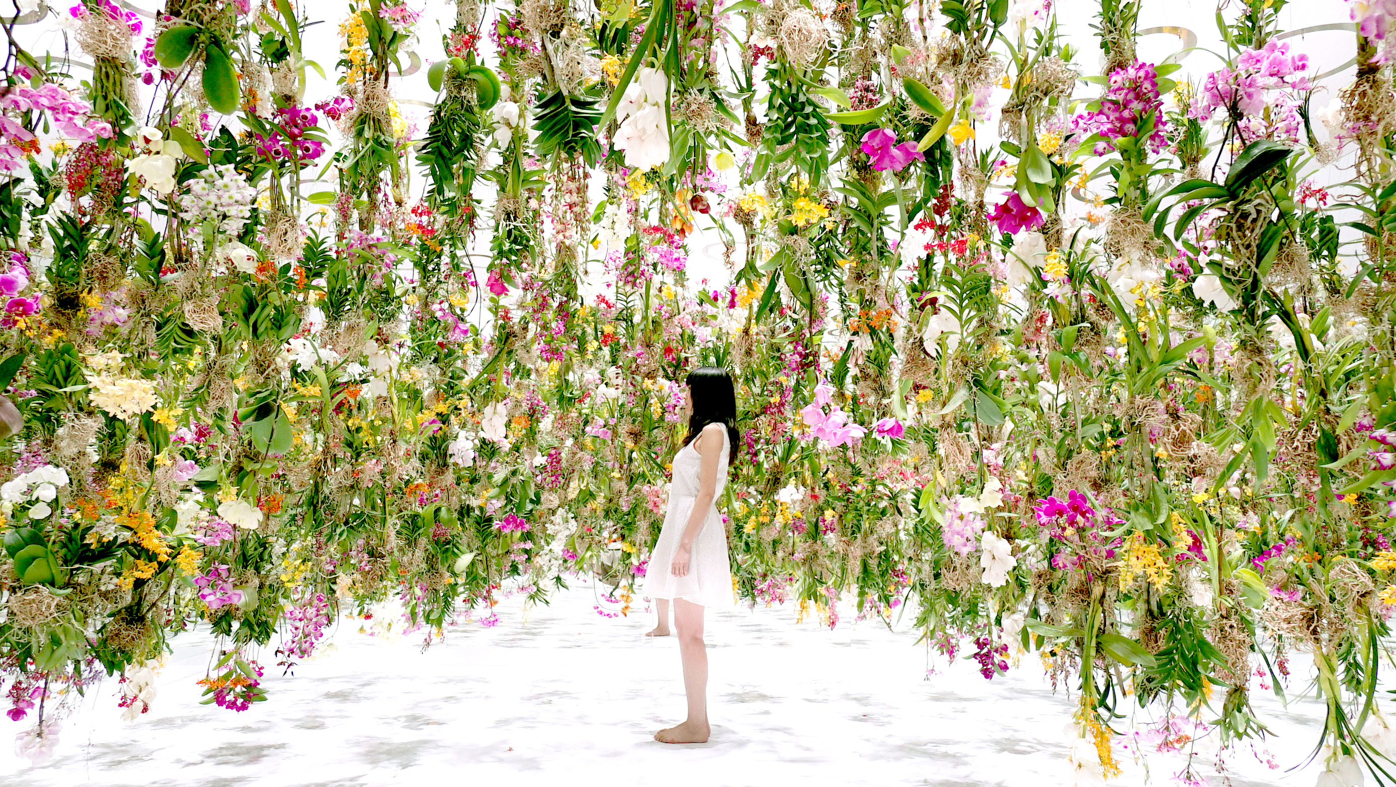 A suspended flower garden that lifts out of the way when a for Garden flower