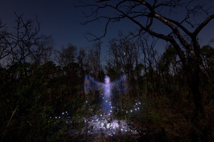 Apparitions Angelic Light Painted Figures by Jason D. Page