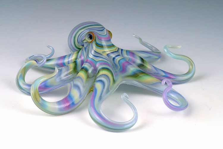 Multi-Colored Octopus