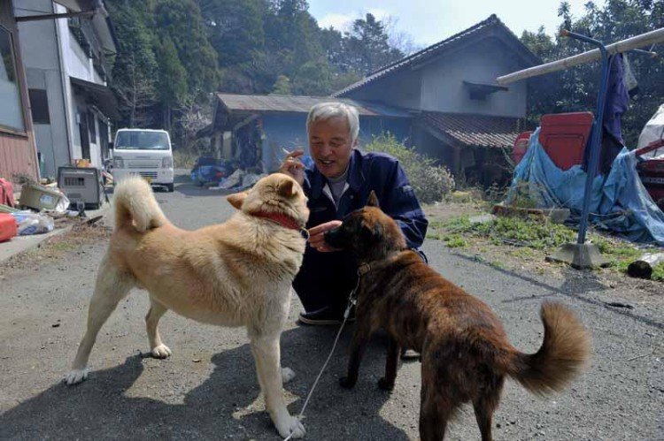 With Dogs