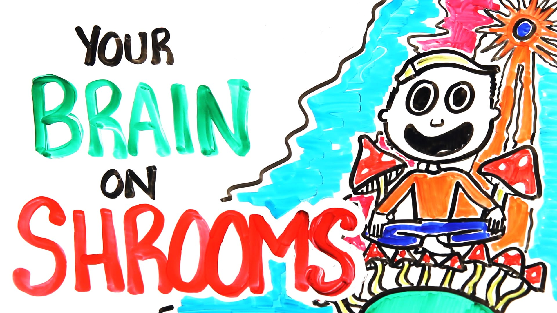 AsapSCIENCE Breaks Down the Effects of Psychedelic Mushrooms on the Brain