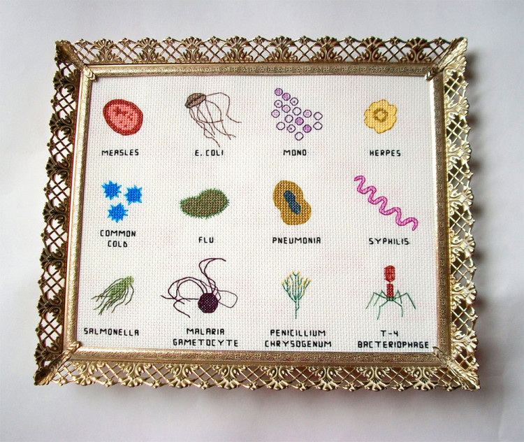 Cross Stitch Embroideries of Microbes and Viruses by Alicia Watkins