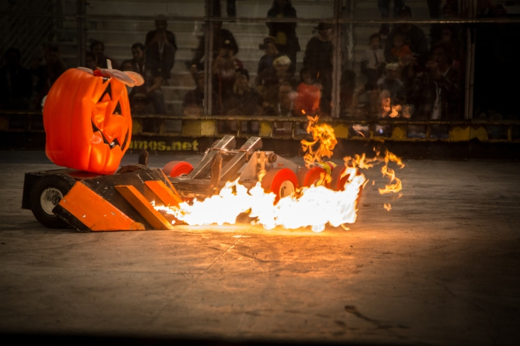 Photos and Video of the 11th Annual RoboGames in San Mateo, California