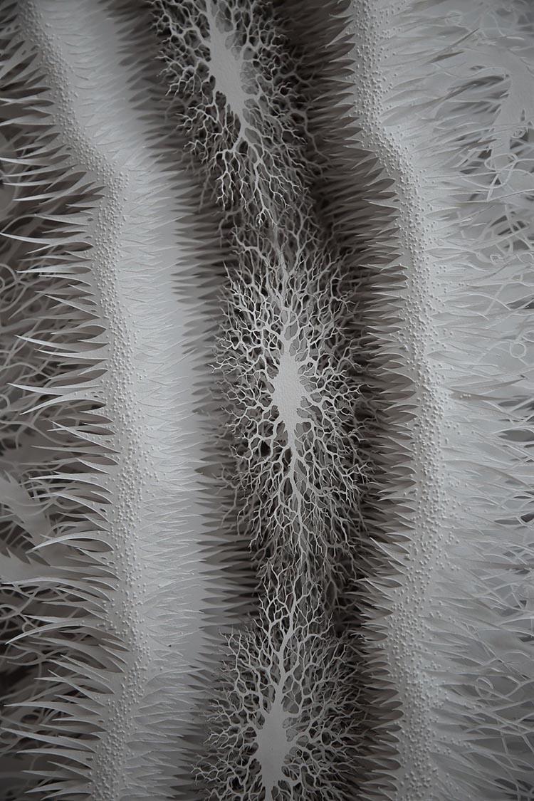 Cut Paper E. Coli Bacteria Sculpture
