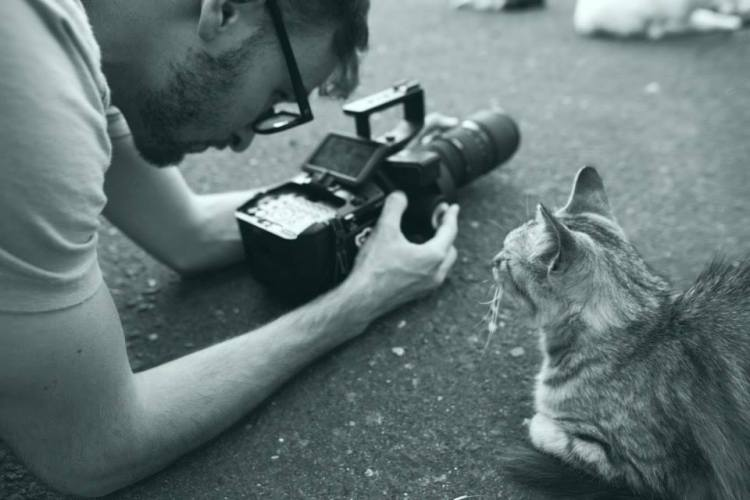 Cat Island - Photographer