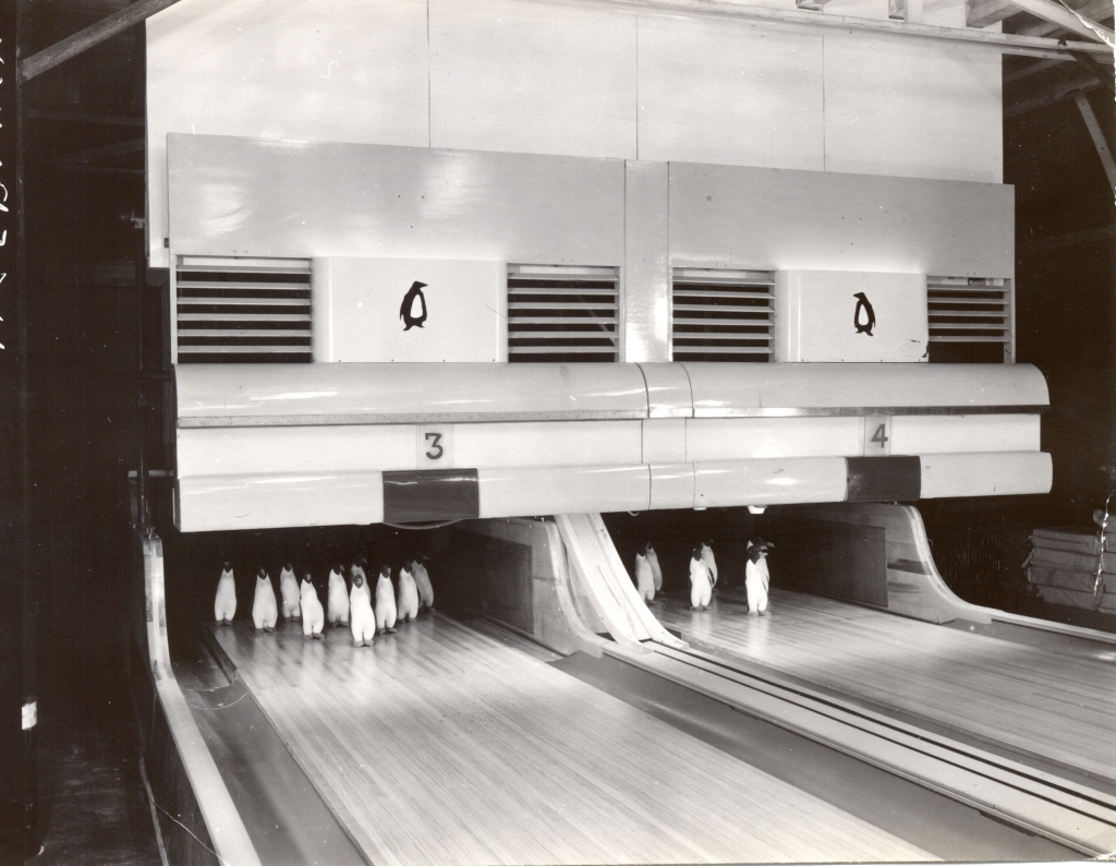 The Little-Known Bowling Alley at McMurdo Station in Antarctica
