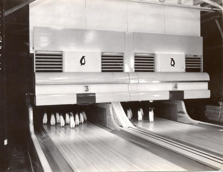 Antarctica Bowling Alley