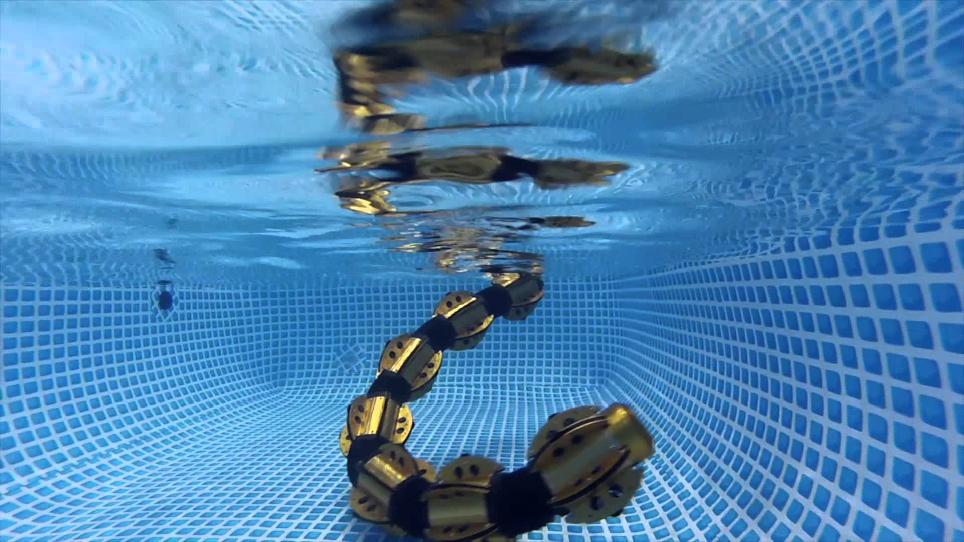 A Slithering Snake Robot That Can Swim Underwater With Unsettling Ease