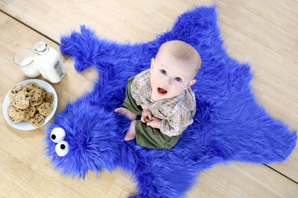 How To Make A Diy Cookie Monster Fur Rug And Cookie Pillows