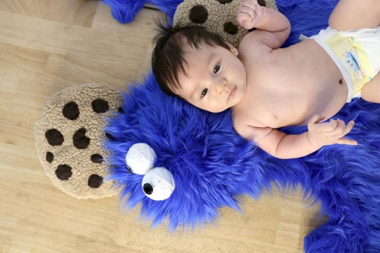 cookie monster rug 4