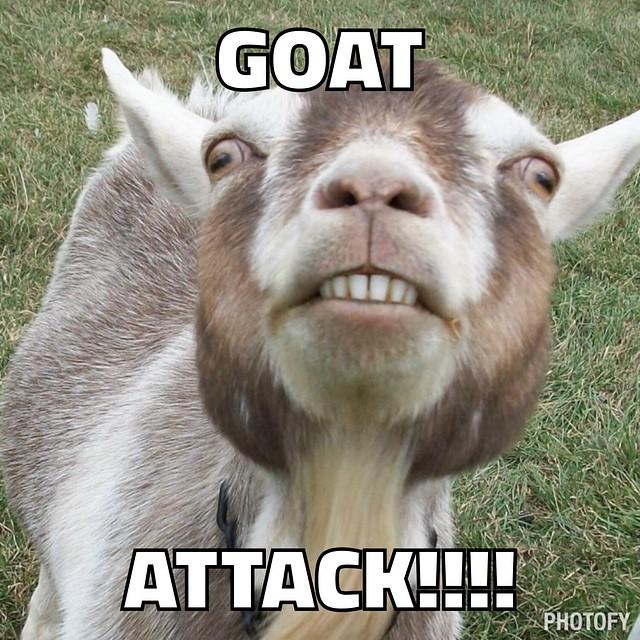 goat attack 3