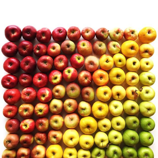 Apple gradient
