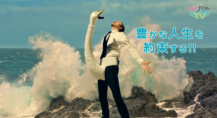 Swan Smartphone Holder Ad