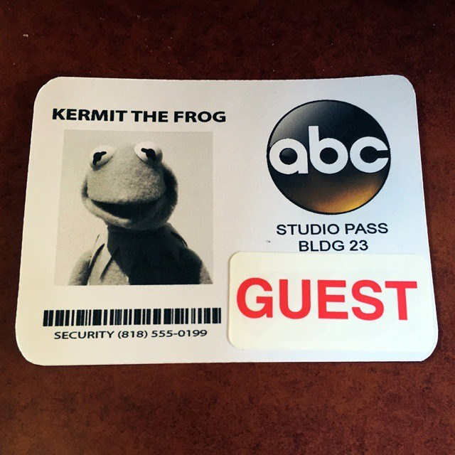 Kermit studio pass