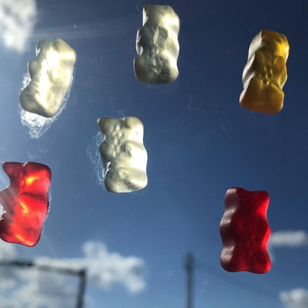 Gummy Bears on Window