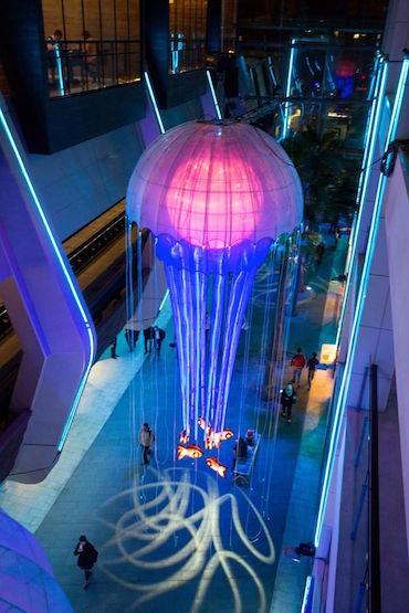 Jellyfish Lights Overhead