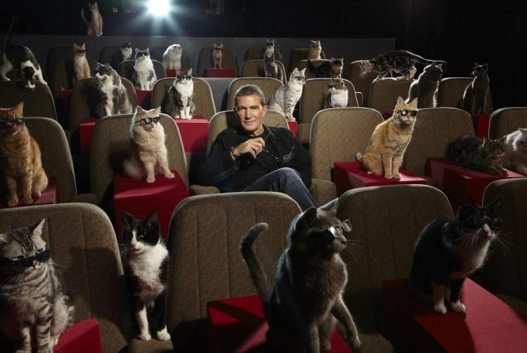 Kitty Theater