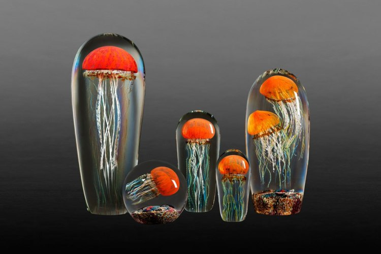 Multiple Jellyfish