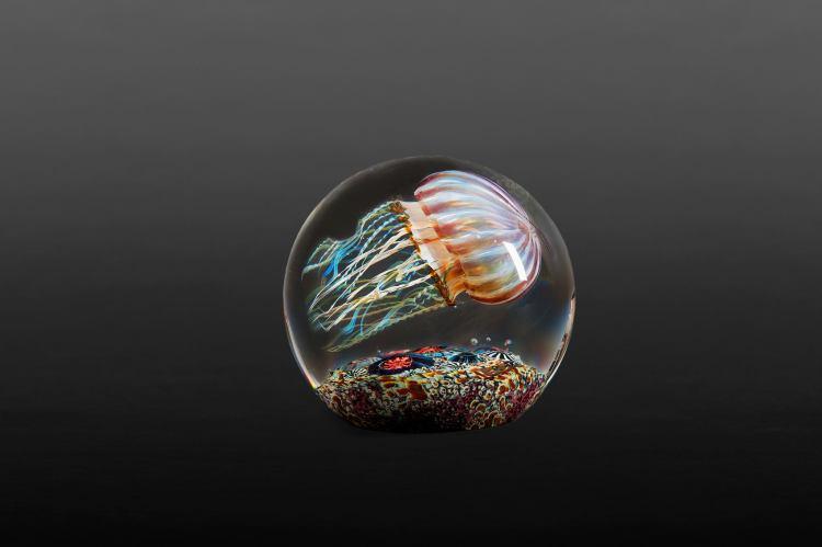 Passion Moon Jellyfish 2