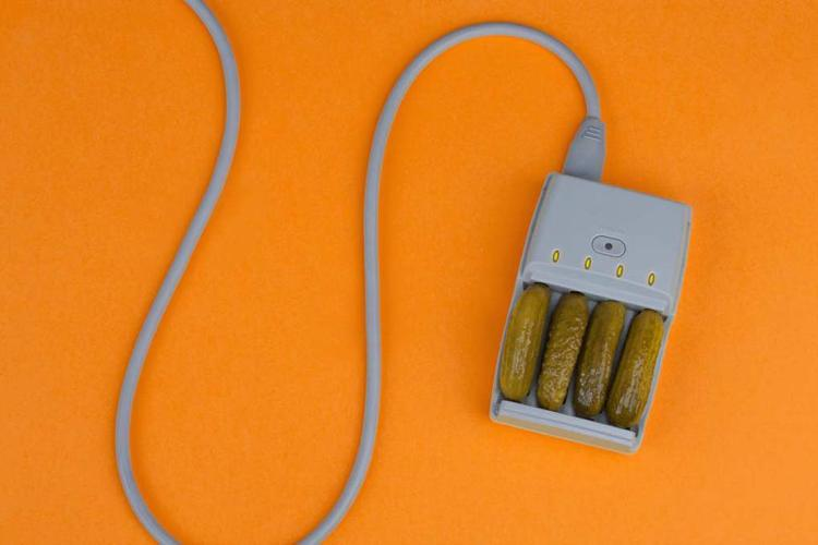Pickle Charger