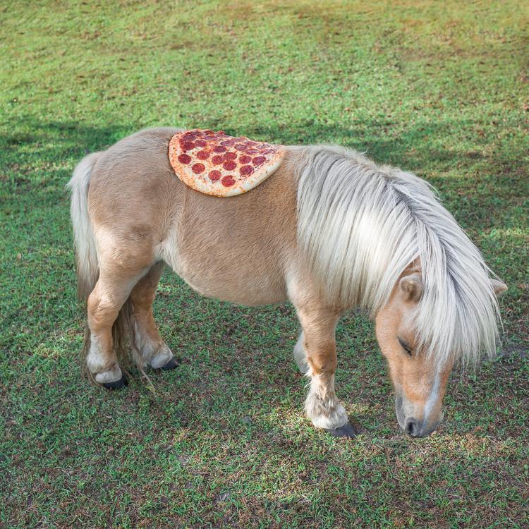 pizza pony