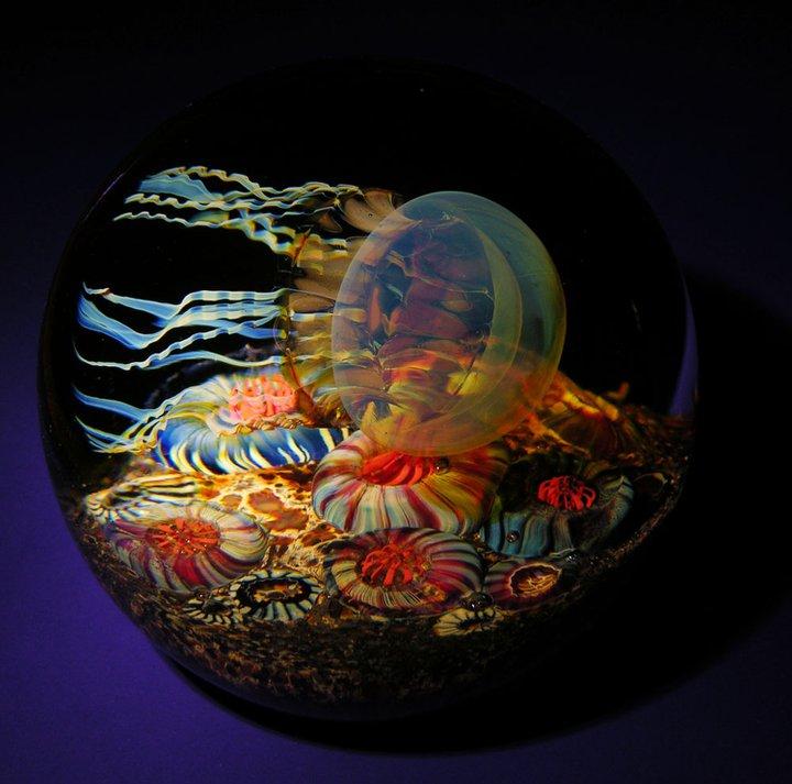 Side Swimmer Jellyfish