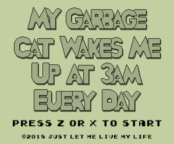 My Garbage Cat Wakes Me Up At 3AM Every Day