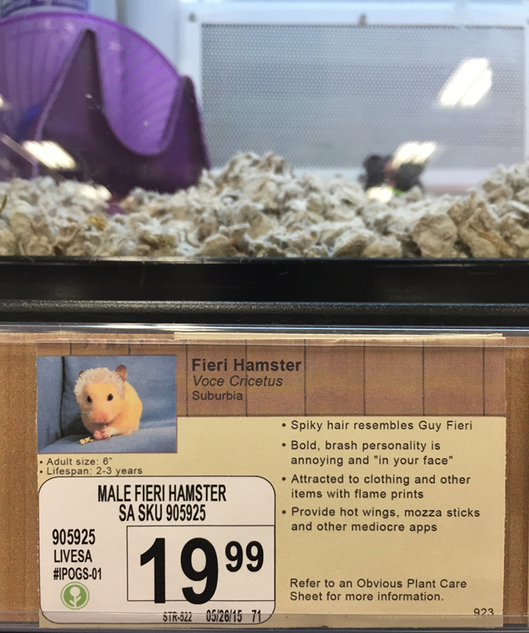 Obvious Plant Adds Hilarious Fake Descriptions for Ordinary