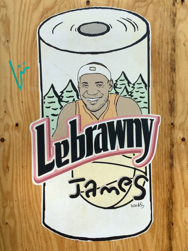 LeBrawny James