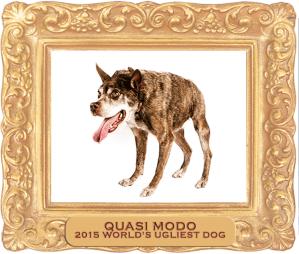 2015 World's Ugliest Dog