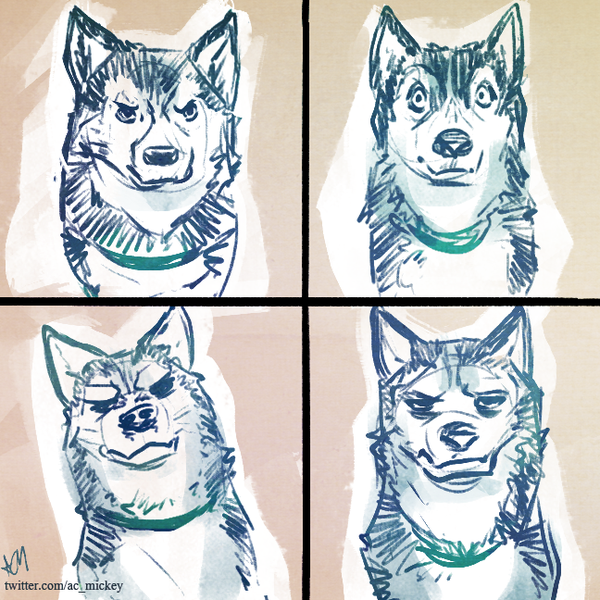 4 Expressions