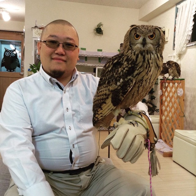 Owl and Man