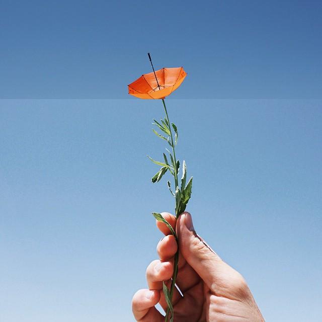 Umbrella + Flower