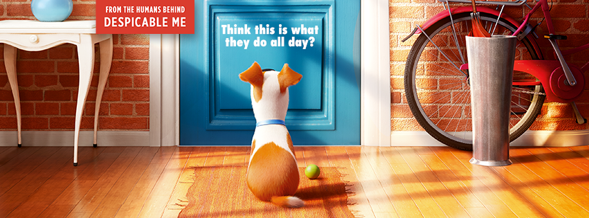 'The Secret Life of Pets', An Upcoming Animated Feature by the Makers of the 'Despicable Me' and 'Minions' Series