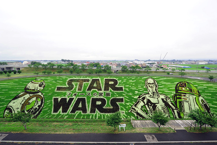 Star Wars Tambo Art