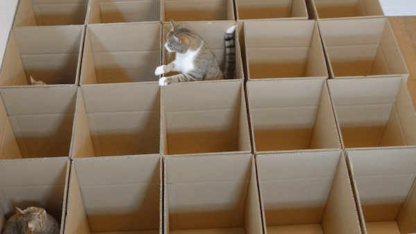 Cardboard-Maze-2