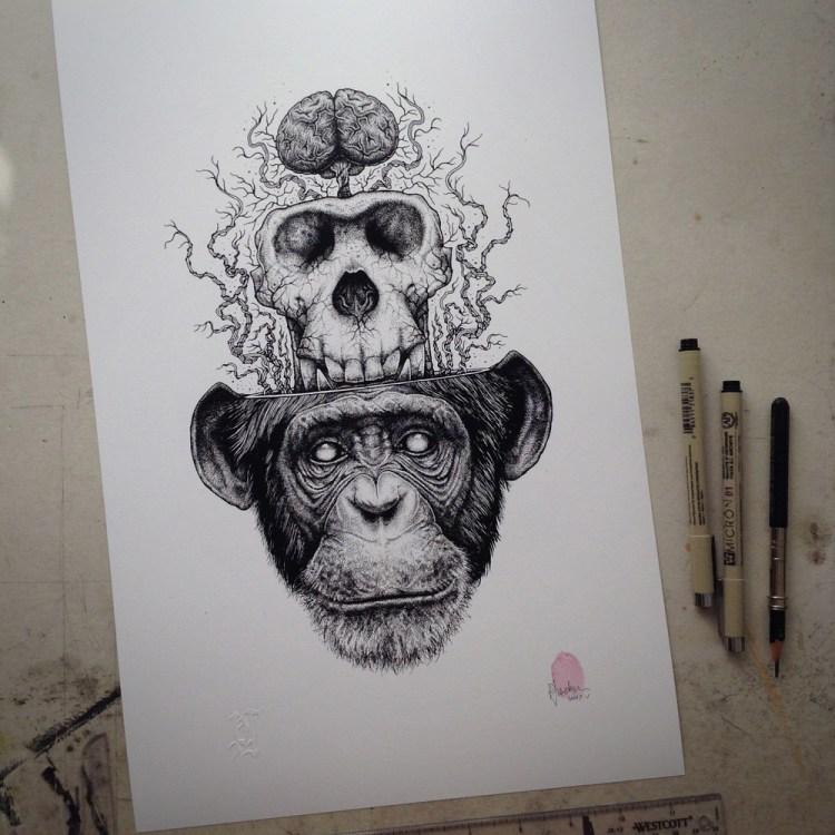 Chimp Skull Extraction