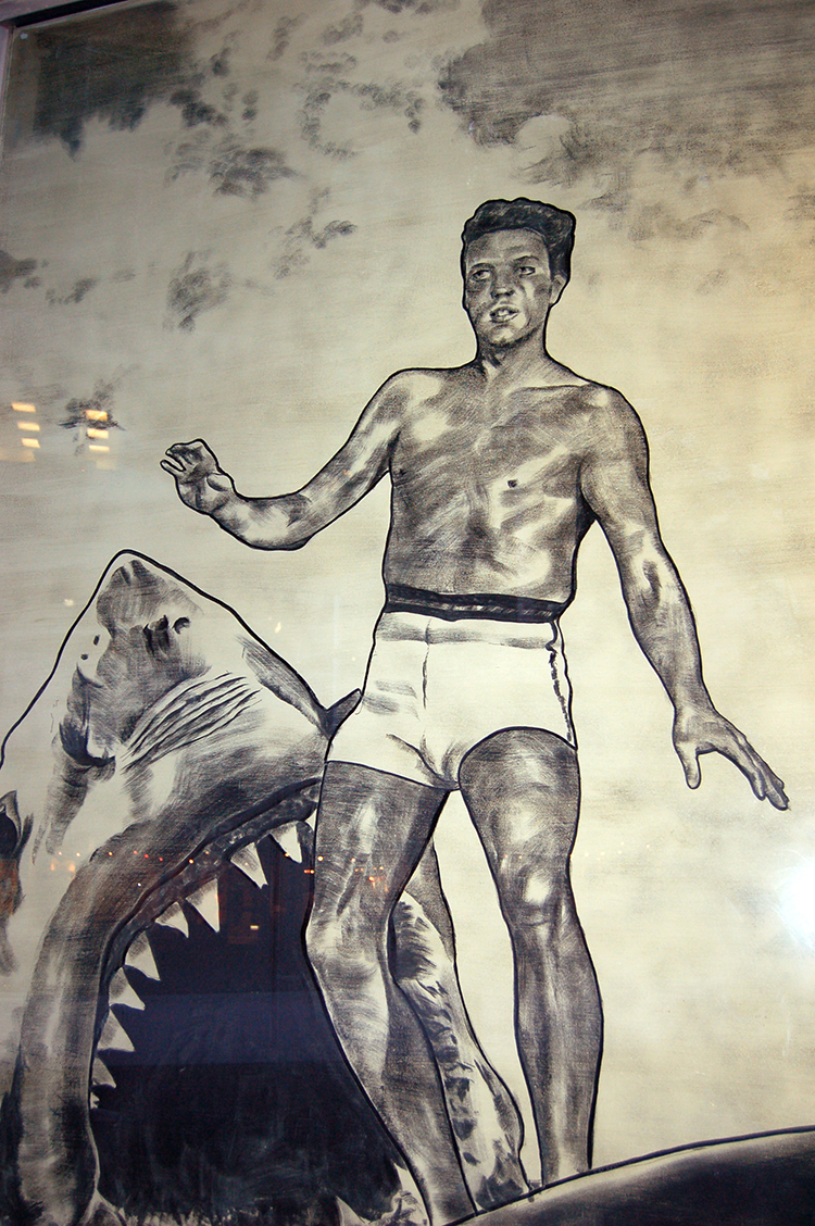Elvis and the Shark