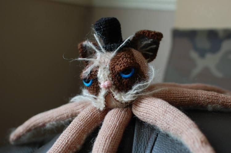 Grumpy Catipus